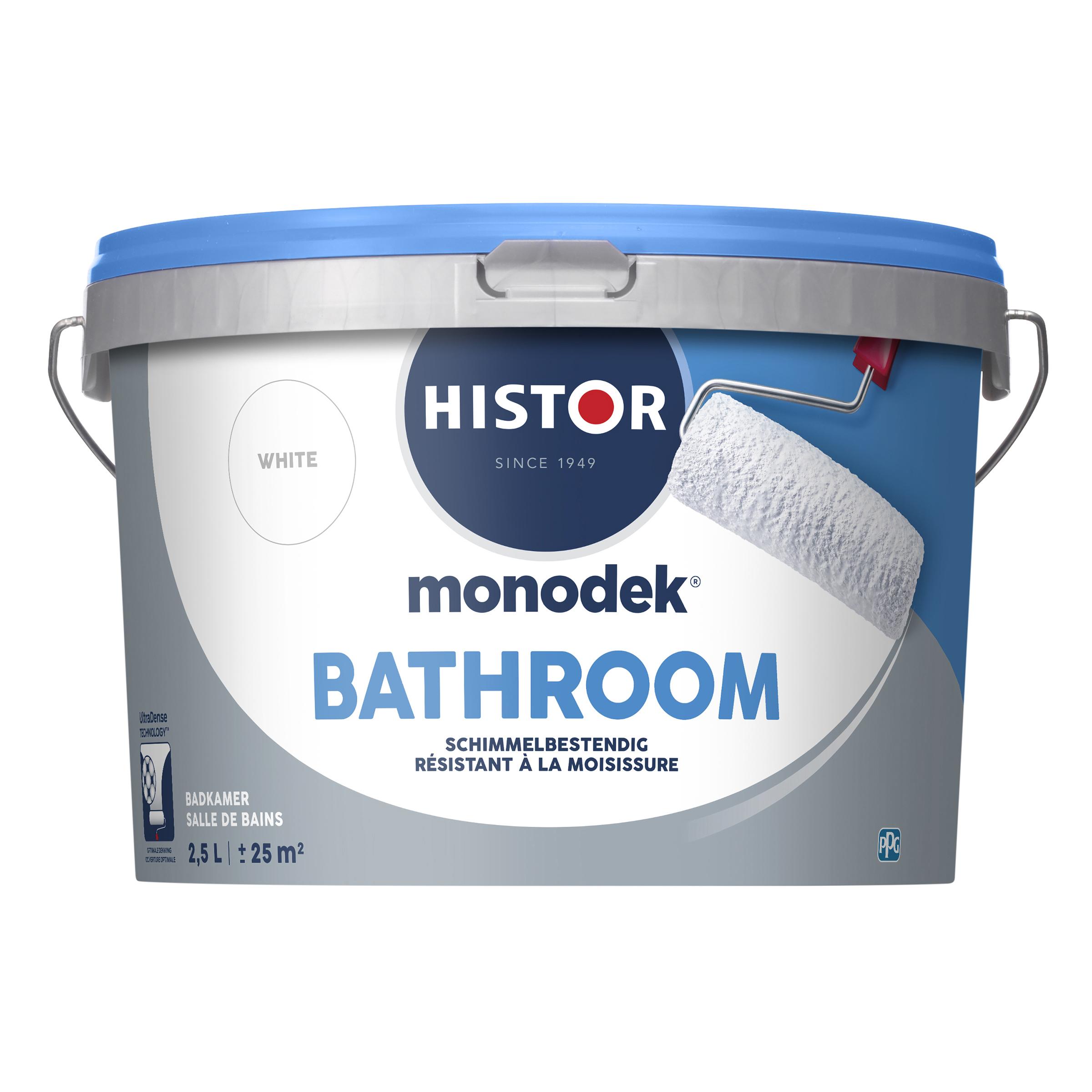 Badkamer Muurverf Zijdeglans